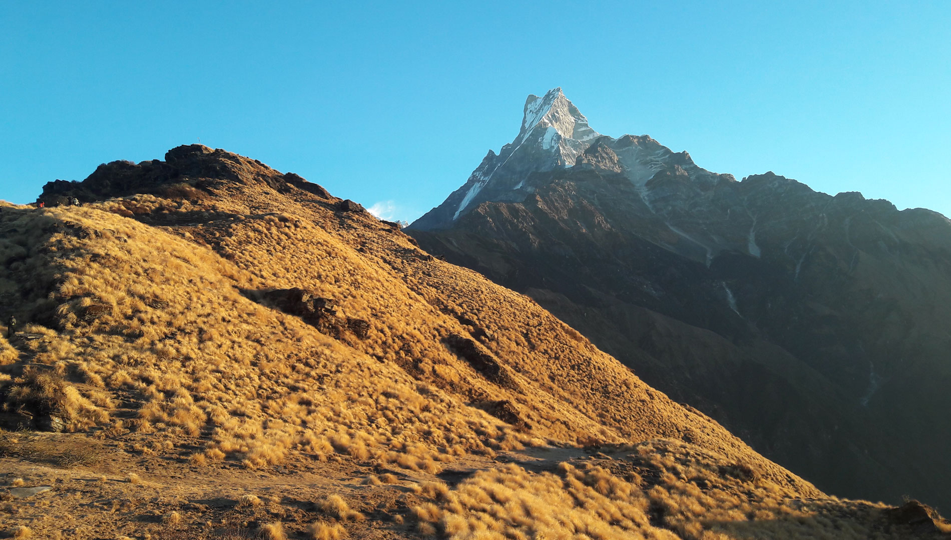 Mardi Himal Trek 9 days