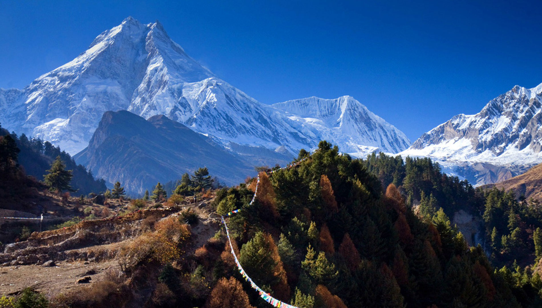 Manaslu Circuit Trek 11 days